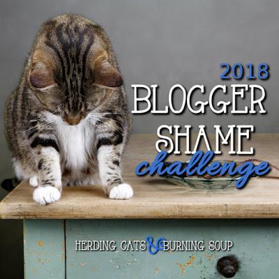 blogger shame challenge.jpg