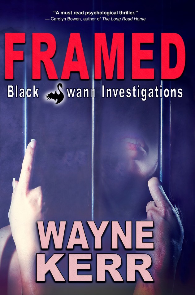 Framed cover 4.jpg