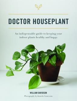Dr house plant